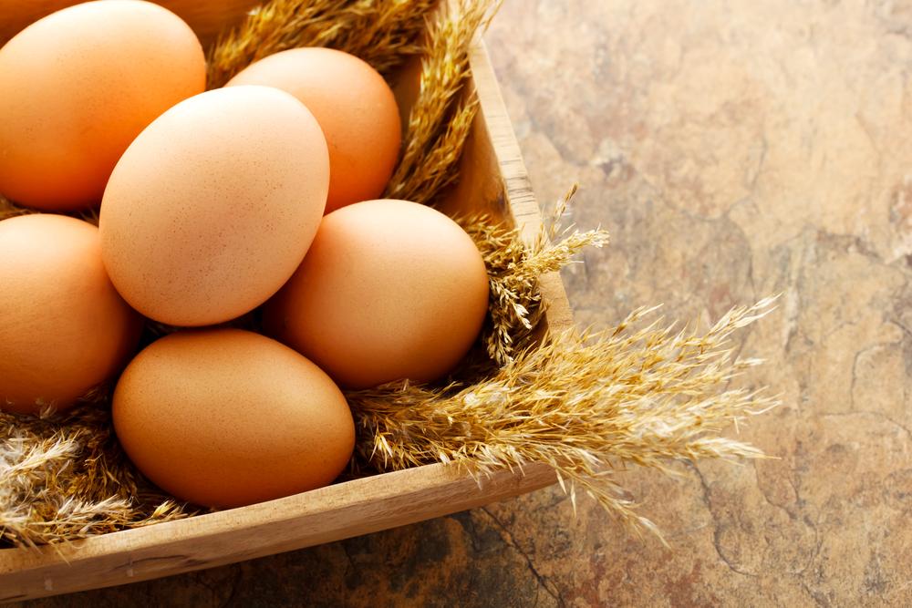 Image result for basket of eggs